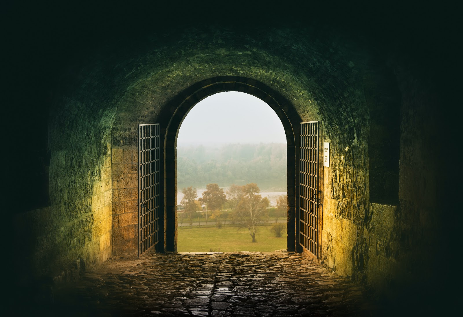 Cover Image - Exit gate
