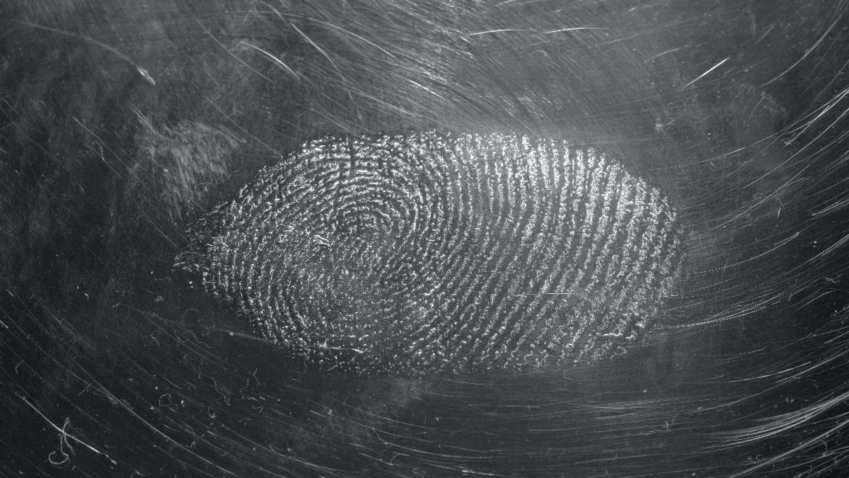 A fingerprint in a surface full of risks.